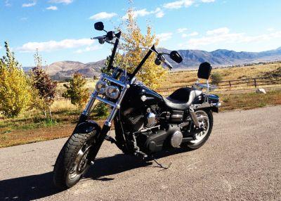 Wren Murry's 2008 Harley Fat Bob